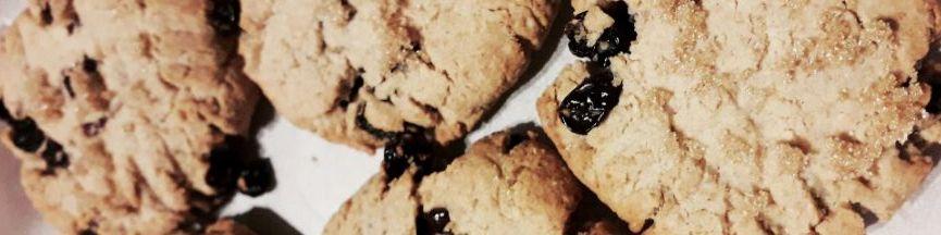 Oat Flour Raisin Cookies